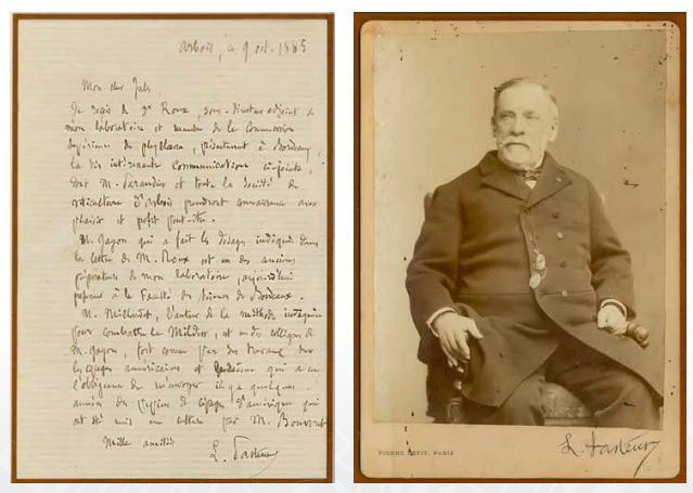 Louis Pasteur Vivanco