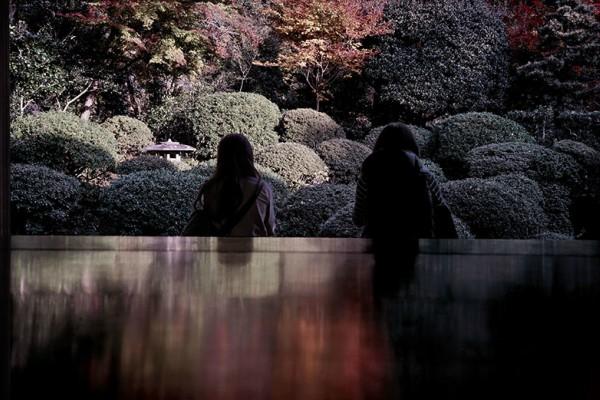 Una semana para el arte y la cultura japonesa, Japan Art Week